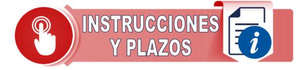 INSTRUCCIONES Y PLAZOS